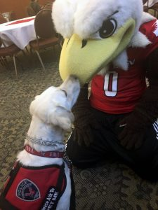 Dog kissing EWU mascot Swoop