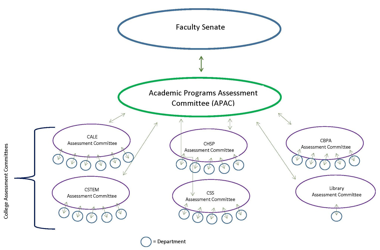 Academic Programs' Assessment Structure