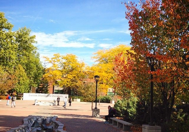 the mall during the fall