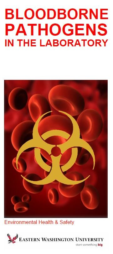 Cover image for Bloodborne Pathogens in the Laboratory brochure