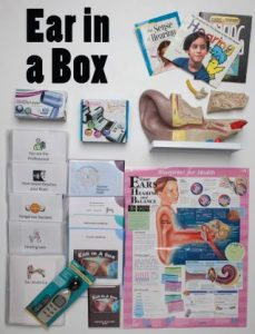 Ear in a Box Lab Activity