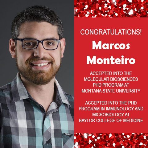 Photo of Marcos Monteiro next to red confetti background with text congratulating him on acceptance into two PhD programs.