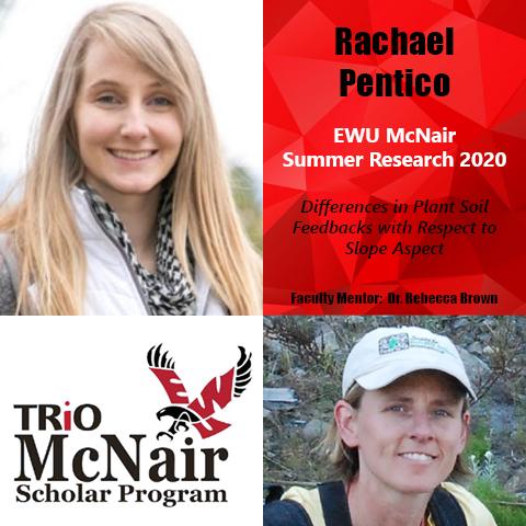 Rachael Pentico Research 2020