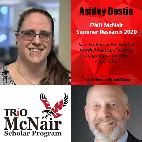 Ashley Destin Research 2020