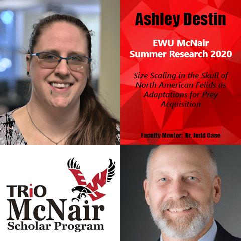 Ashley Destin Research 2020