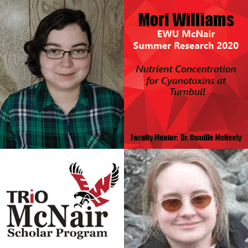 Mori Williams Research 2020