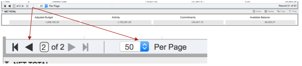 """Shows how to navigate pages/rows and see more information at once by using the page arrows and drop down box next to """"per page."""""""