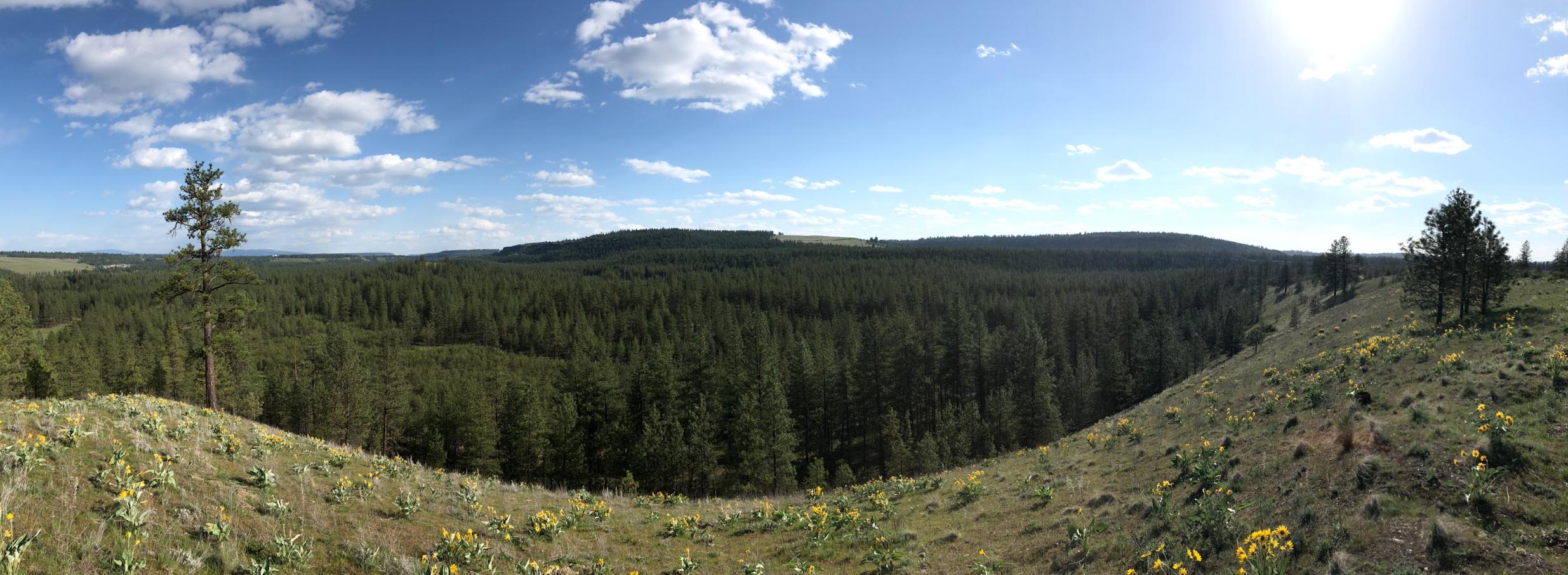 Camp Seven Mile