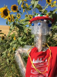 Paul the plastic man standing in front of sunflowers